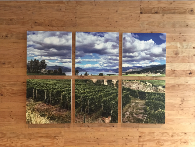 Primacoustic printed panels contribute to artfully tasteful experience at BC winery