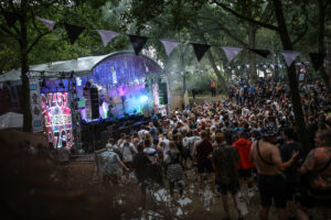Electric Woodlands Makes Enchanted Festival Debut With Martin Audio PA's